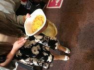福山キャバクラ club BEET みさと 「親子丼」のブログを見る