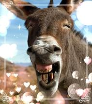 福山キャバクラ 月世界 みい 「笑顔フェチ」のブログを見る
