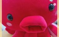 福山セクキャバ いちゃいちゃクラブ KINGDOM キングダム まりも 「こんにちわ┏●」のブログを見る